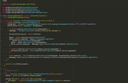 Image of the code behind the Paragraphs module