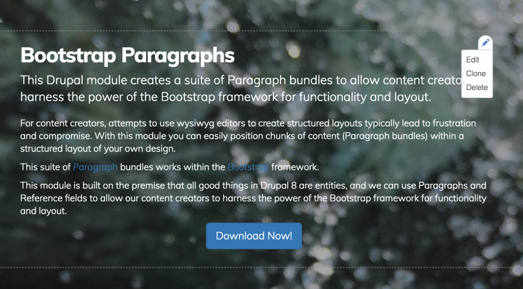 Screen grab of hover state for Paragraphs component