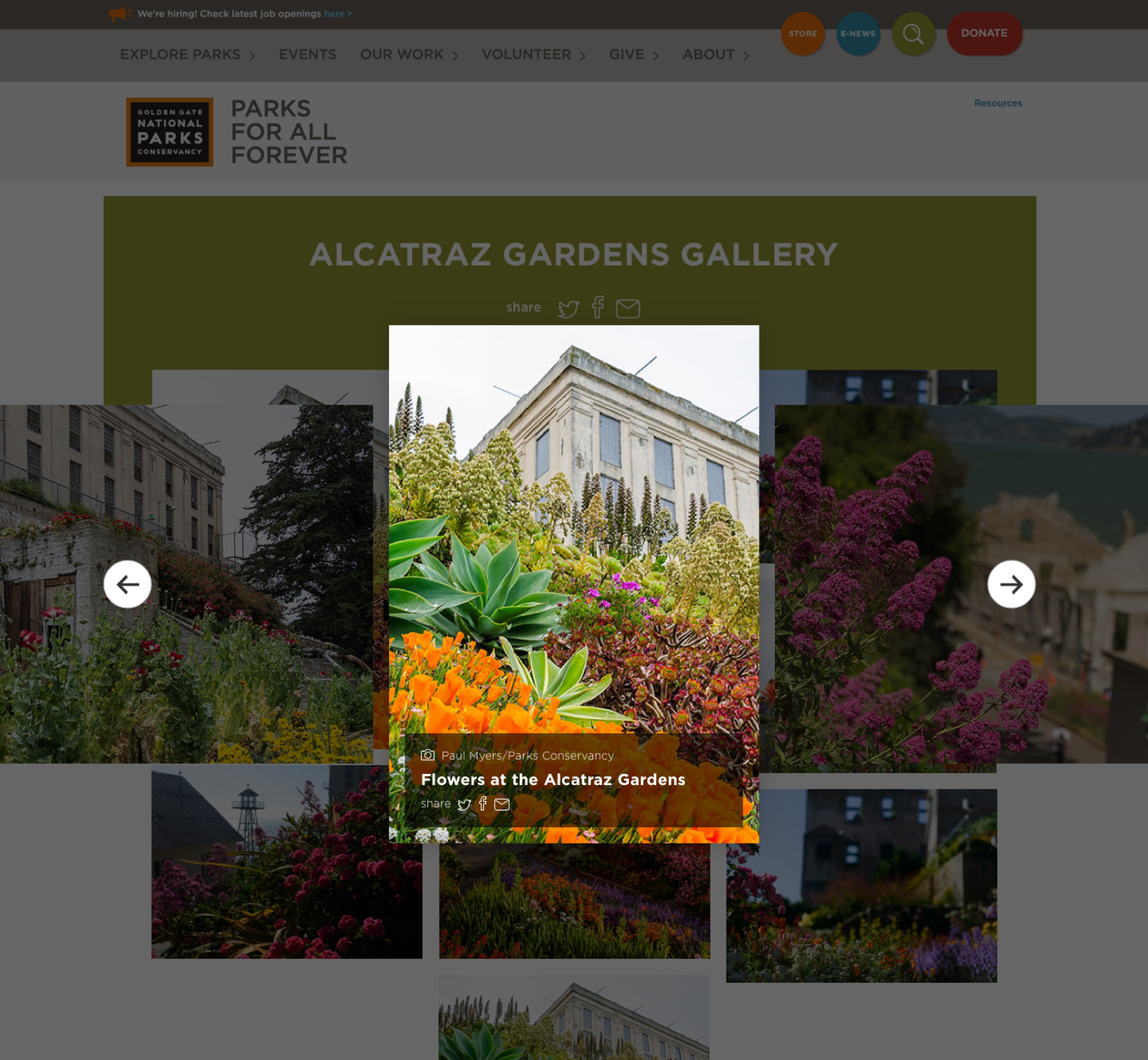 A screenshot of Parks Conservancy's photo gallery light box feature, a Kanopi Studios case study.