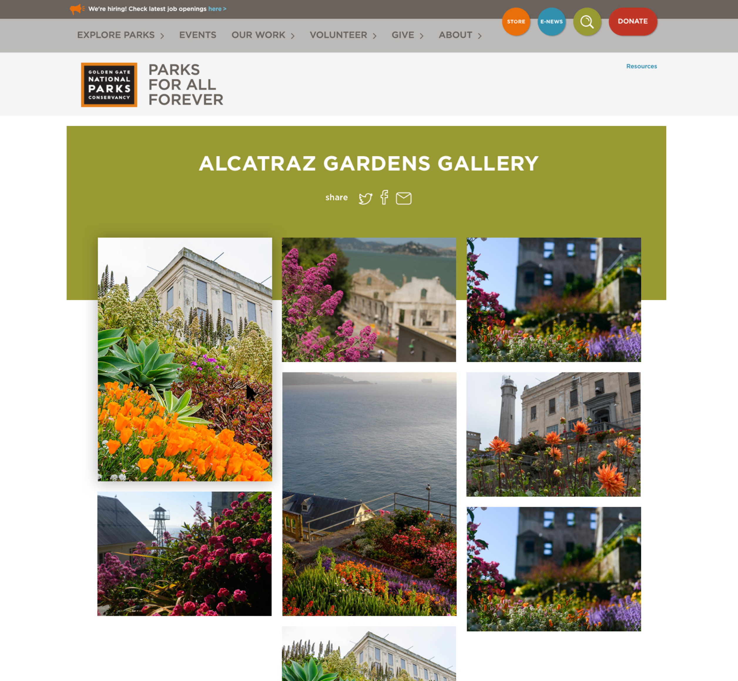 A screenshot of Parks Conservancy's online photo gallery layout, a Kanopi Studios case study.