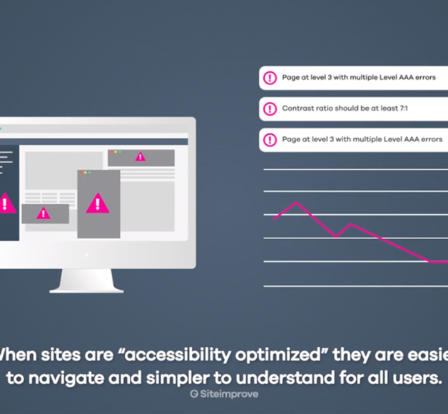 Screengrab from SiteImprove video explaining their product