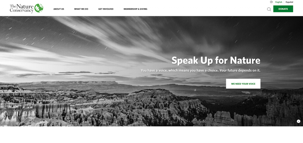 The Nature Conservancy's web design  is a great example of a best nonprofit website.