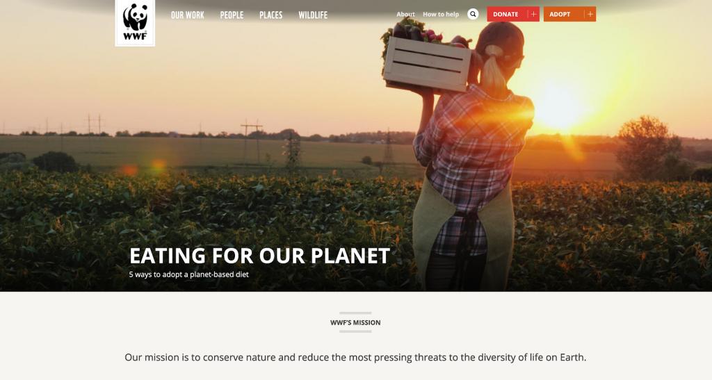World Wildlife Fund has one of the best nonprofit websites.