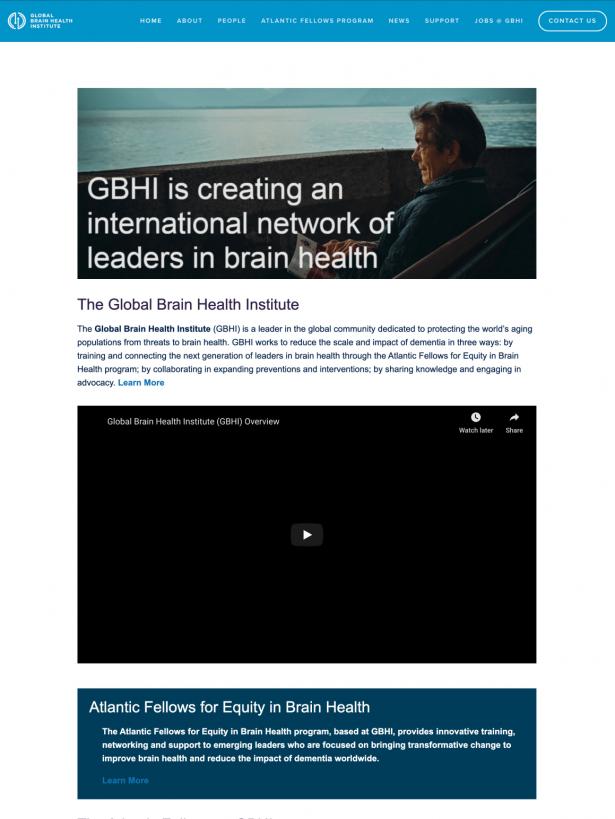 GBHI previous homepage